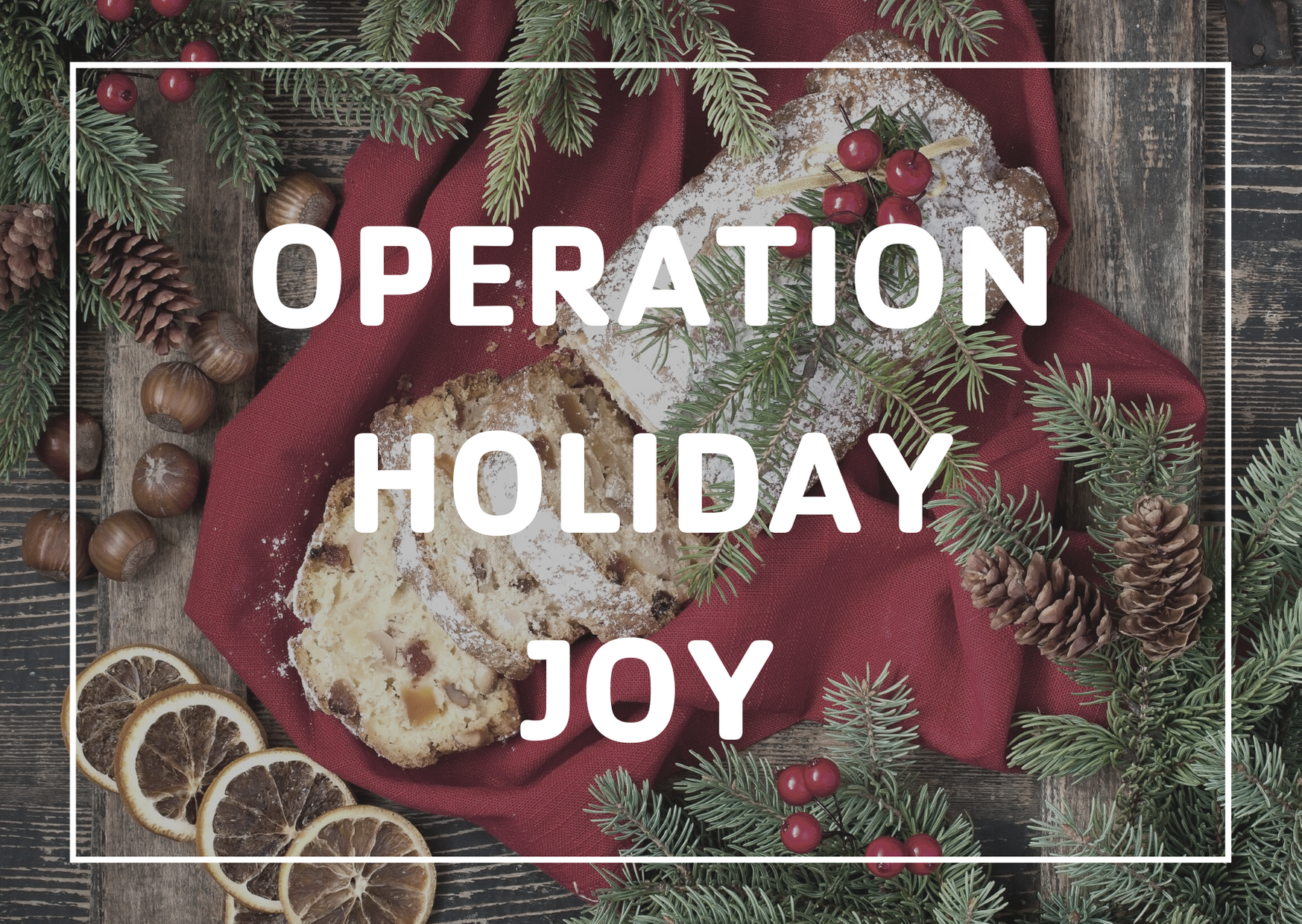Click to register for Operation Holiday Joy